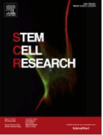 SCR Magazine Cover